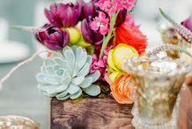Тюльпаны и сукки