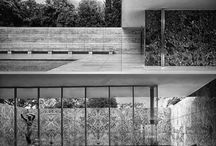 Mies to inspire