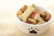 ideas to feed and keep pets happy! / Ideas for our fur babys and all our other animal family members.