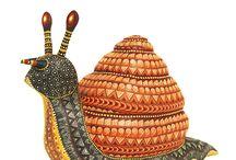 David Hernandez Snail