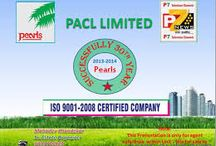PACL Limited - News / PACL Media Coverage