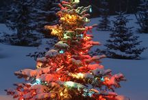 Christmas Image / by Thelma Walls Gosby