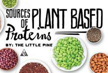 Protein veggies
