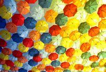 Umbrella sky in Águeda / Photos: Daily Mail