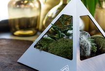 Kraftpyramiden
