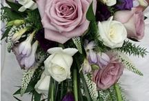 Maria / Simple, stylish designs in soft creams, shell pinks, raspberries, lavenders and Cadbury's purple.