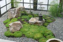 Japanese garden / Jardins japonais intérieur extérieur