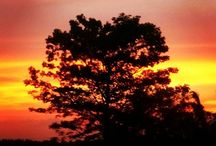 glorious sky / This picture is taken by Govind Pathak at Latehar