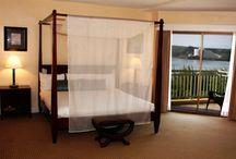 Junior Suite / 7 Junior Suites - approximately 737 sqft 2 adults, 2 children maximum - king bed with living room area Partial oceanview guestroom