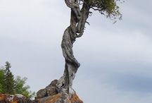 STROMY-TREE