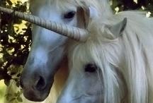 Волшебные животные