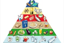 Switzerland's food guide  / Switzerland's food guide is easy to use,give it a try