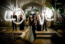 Wedding Photo Ideas / by Jacqui Painter