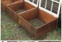 Hage / Her er det bilder fra min hage som jeg elsker og bilder fra andre hager