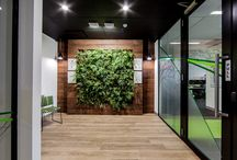 Tox Free Solutions Office Fitout / Another space transformed and another very happy client!