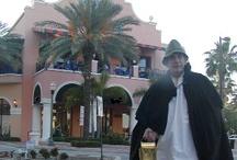 St. Petersburg & Tampa, FL