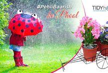 #PehliBaarish / Tidy Homz presents #PehliBaarish, watch this space for product updates, fun stuff and more