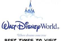 Disney for dummies / by Missy Wright