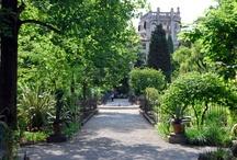 Padova&Colli