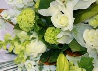 Iain Stephens and Interflora / www.nzflowers.co.nz http://www.interflora.co.nz/flowers/