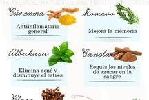 plantas aromatica