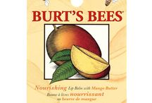 Burt's Bees Illustrated by Steven Noble
