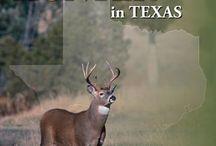 Texas / by Hunter Ed