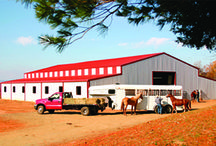 Metal Barns / Beautiful and functional barns, economics of steel. These buildings will serve the home, the farm, and as animal shelters for years with lasting durability.