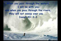 bible says
