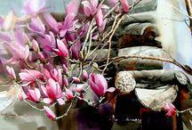 Shin Jong Sik  (Coreea ). Pictor acuarelă / Watercolorist Shin Jong Sik este renumit pentru exprimare prin culori transparente curate,. exprima sentimente pline de culoare, demne și profunde. .Picturile sunt vii și dinamice. Shin a avut 24 de expoziții solo în Seul (Coreea), Beijing, China, New York, Statele Unite ale Americii, Tokyo, Japonia, și Berlin, Germania.