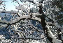 AWESOME WINTER DESTINATIONS / Magnificent beauty of hill stations in Winters ...