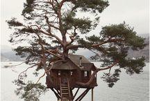 La casa de l'arbre