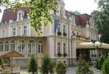 Niewodniki - Pałac / Pałac w Niewodnikach wzniesiony został w 1870 roku przez Juliusa von Wichelhausa. Po wojnie pałac przeszedł w ręce miejscowego PGRu, w budynku utworzono dom kultury i ośrodek kolonijny. Niewłaściwe zagospodarowanie, zaniedbania i nieprzeprowadzanie bieżących remontów doprowadziło pałac do ruiny.  W 1996 roku rezydencję od Agencji Własności Rolnej Skarbu Państwa kupiła spółka Piastpol. Budynek został gruntownie odrestaurowany i otwarto w nim hotel.