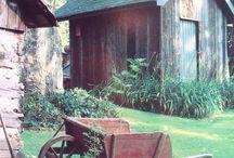 Gardening by the Yard / by LeeAnn Imel