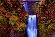 Travel - White Xmas - USA / Short list places to visit in the States / by Kulwadee Chaitongdee