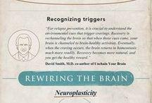 how brain works