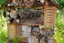 garden & insect hotel
