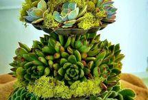 artes florais