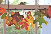 Fall is My Fave Season / Thanksgiving and Harvest decor / by Debbie B
