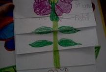 Teaching Ideas / by Emily Elizabeth