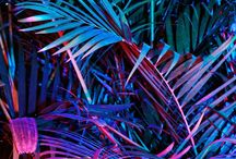 Neon/Synthwave Art