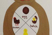 Αυγό- Κότα