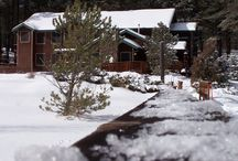Winter Time / A perfect places to relax in the snow, winter time at the Lodge is peaceful and beautiful.