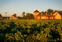 The Winery / Our state of the art production facility is a beautiful rendition after the clock tower in Prague, to give ode to Augustine Herrman, Lord of the Bohemia Manor Farm, home to our vineyard & winery.