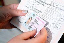Đổi bằng lái xe quốc tế tại Ninh Thuận