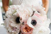 flowers / by Leah Dykins