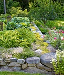 Garden Inspirations / by Cailin