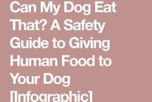 Can My Dog Eat That ?