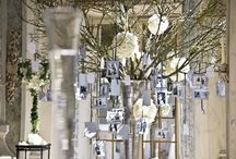 ♧ Family tree ♧ / Want to share some pictures with your guests? What about a picture tree?