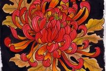 Crisantemos / Crisantemi